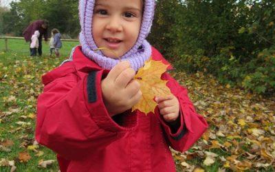 Der Herbst ist da! Unsere Aktionen in der Kinderkrippe: